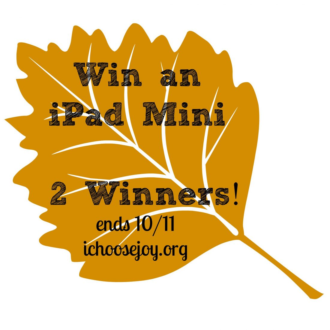 Giveaway: iPad Mini to 2 different winners!