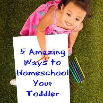 5 Amazing Ways to Homeschool Your Toddler!