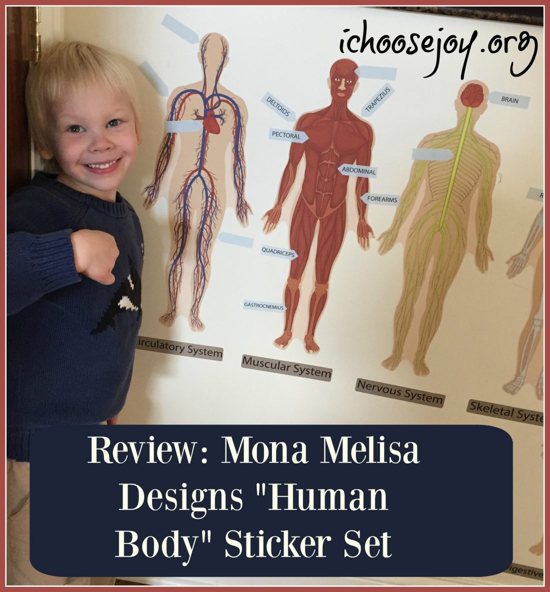 "Review: Mona MELisa Designs ""Human Body"" Peel, Play, and Learn Sticker Set"
