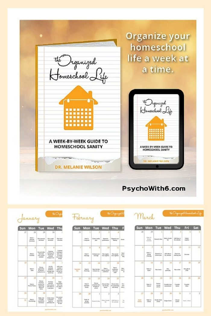 """The Organized Homeschool Life: Day 3 of """"6 Days of New Year's Resolutions"""""""