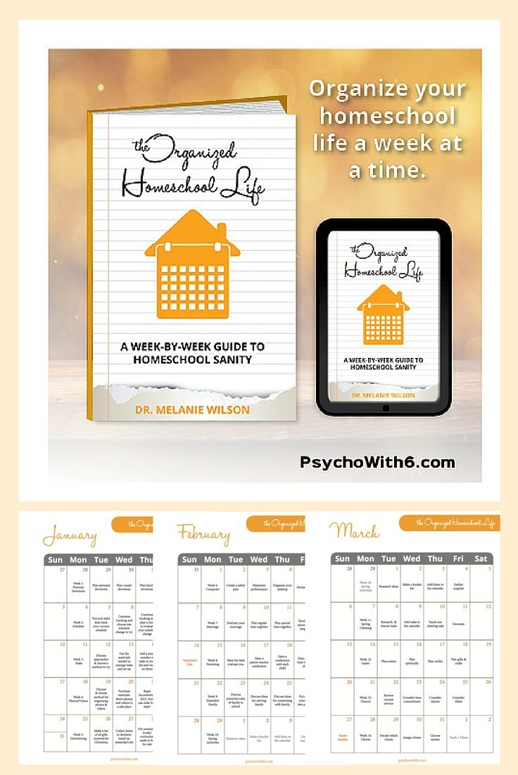 "The Organized Homeschool Life: Day 3 of ""6 Days of New Year's Resolutions"""