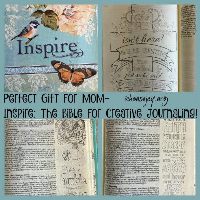 Great Mom's Gift Inspire Bible for Creative Journaling