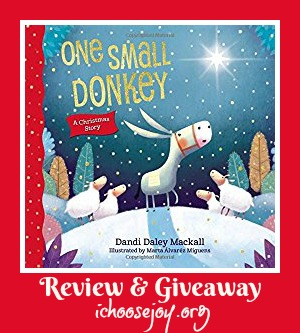 One Small Donkey children's book review and giveaway