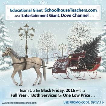 SchoolhouseTeachers.com and Dove Channel promotion for Black Friday