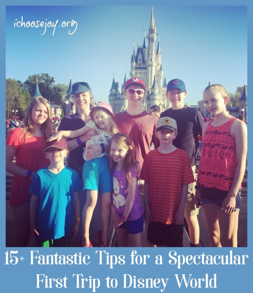 15+ Fantastic Tips for a Spectacular First Trip to Disney World