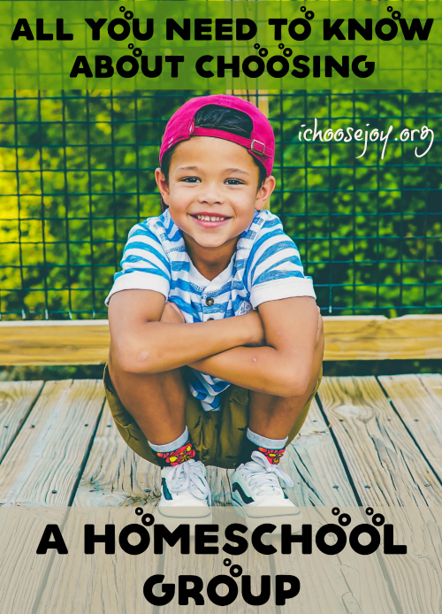 All You Need to Know About Choosing a Homeschool Group