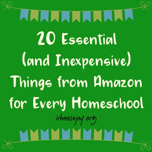 20 Essential (and Inexpensive) Things from Amazon for Every Homeschool