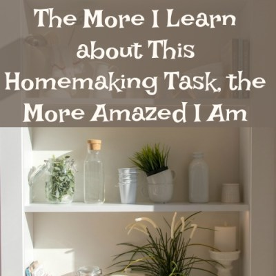 The More I Learn about This Homemaking Task, the More Amazed I Am