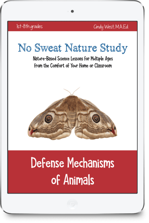 No Sweat Nature Study about Defense Mechanisms of Animals from Our Journey Westward, a great science curriculum