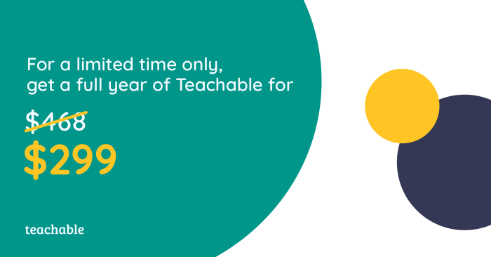 Teachable online course site platform full year sale