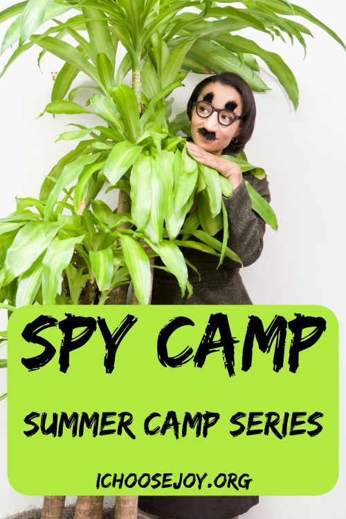Spy Camp: Summer Camp Series