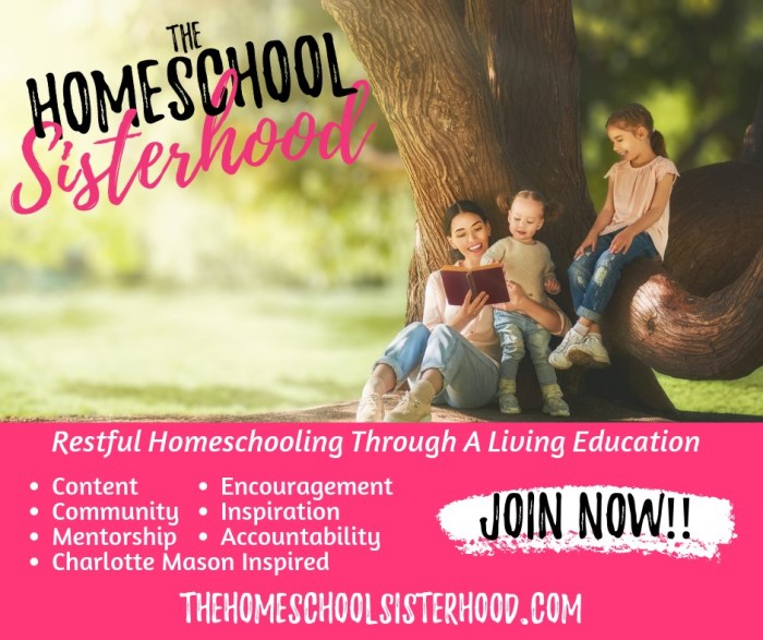The Homeschool Sisterhood