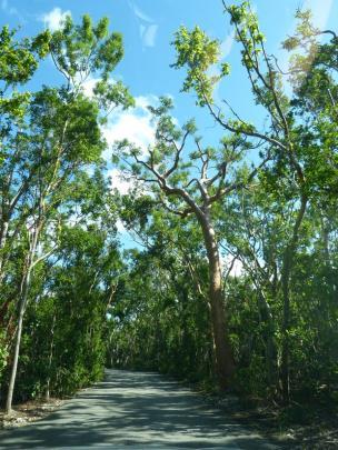 Einfahrt in den John Pennekamp Coral Reef State Park