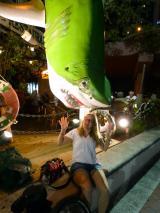 Der grüne Hai