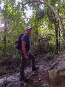 Thailand Khao Sok Nationalpark Dschungel Anurak Community Lodge Dschungelpfad