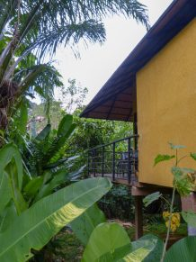 Thailand Khao Sok Nationalpark Dschungel Anurak Community Lodge Bungalow