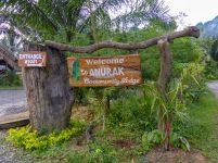 Thailand Khao Sok Nationalpark Dschungel Anurak Community Lodge