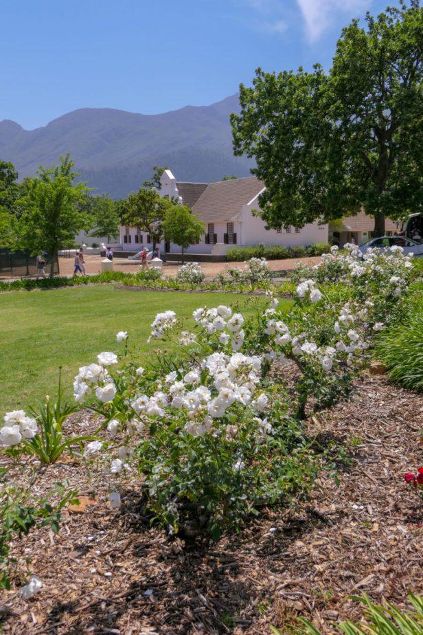 Südafrika South Africa Franschhoek Winelands Weinregion kaphollänischer Stil