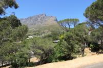Südafrika Kapstadt Cape Town City Sightseeing Hop on Hop Off Bus Doppeldeckerbus Bustour Tafelberg Grün