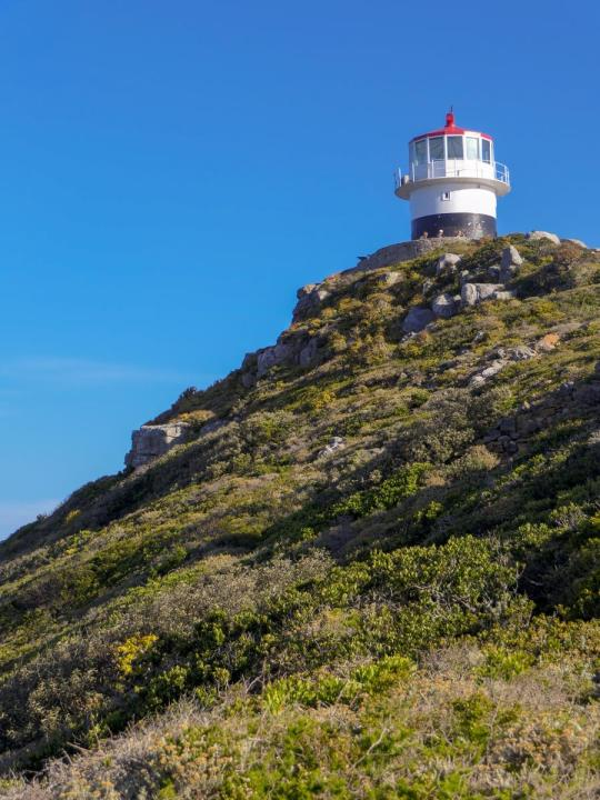 Südafrika South Africa Kap Halbinsel False Bay Cape Point Nationalpark Alter Leuchtturm