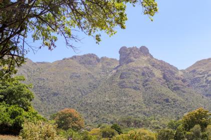 Südafrika South Africa Kapstadt Cape Town Kirstenbosch Botanical Garden Botanischer Garten Tafelberg Table Mountain