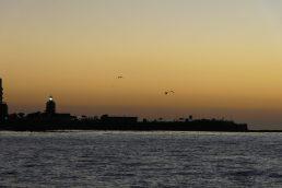 Südafrika Kapstadt Cape Town Victoria 6 Alfred Waterfront Sunset Cruise Sonnenuntergang Bootsfahrt Katamaran Green Point Lighthouse