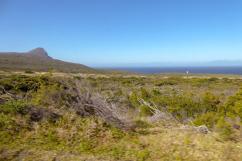 Südafrika South Africa Kap Halbinsel Cape Point Nationalpark Landschaft