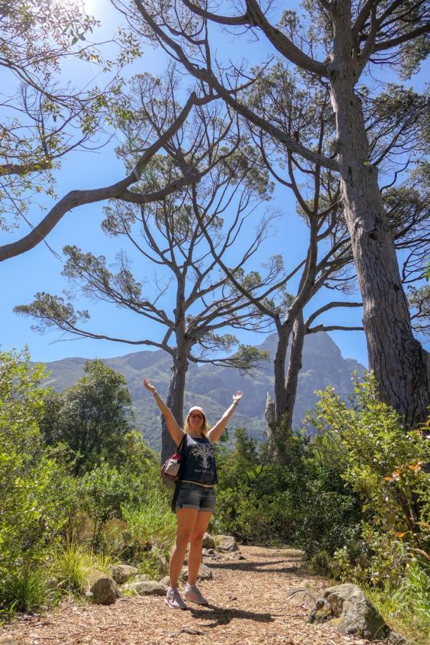 Südafrika South Africa Kapstadt Cape Town Kirstenbosch Botanical Garden Botanischer Garten Bäume