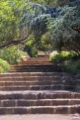Südafrika South Africa Kapstadt Cape Town Kirstenbosch Botanical Garden Botanischer Garten Treppen