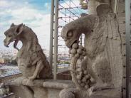 Frankreich Paris Notre Dame de Paris Kathedrale Glockenturm Turm Turmbesteigung Galerie Gargouille Gargoyle Wasserspeier Drache Geier