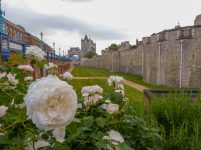 Großbrittanien England London Tower of London Tower Bridge historisch Mauer