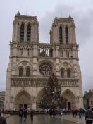 Frankreich Paris Notre Dame de Paris Kathedrale Gotik Fassade Glockentürme Parvis Vorplatz Weihnachten Weihnachtsbaum