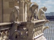 Frankreich Paris Notre Dame de Paris Kathedrale Glockenturm Turm Turmbesteigung Galerie Gargouille Gargoyle Wasserspeier Elefant