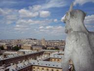 Frankreich Paris Notre Dame de Paris Kathedrale Glockenturm Turm Turmbesteigung Galerie Gargouille Gargoyle Wasserspeier Ausblick