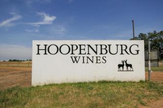 Südafrika South Africa Weinregion Winelands Stellenbosch Weinfelder Hoopenburg Weingut Guesthouse