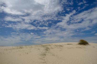 Südafrika South Africa Kap De Hoop Nature Reserve Naturreservat Sanddüne Dünen