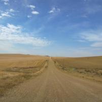 Südafrika South Africa Kap De Hoop Nature Reserve Naturreservat Straße