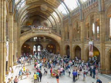 Großbritannien England UK London Natural History Museum Halle Foyer