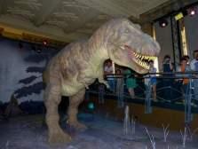 Großbritannien England UK London Natural History Museum Dinosaurier Tyrannosaurus Rex Trex