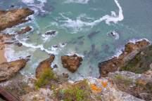 Afrika Südafrika South Africa Garden Route Knysna Eastern Heads Lagune Ausblick Meer