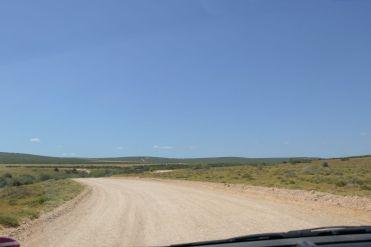 Südafrika South Africa Garden Route Ostkap Addo Elephant Nationalpark Safari Straße