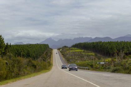 Südafrika South Africa Garden Route Kap Tsitsikamma Nationalpark Straße N2