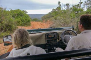 Südafrika South Africa Garden Route Ostkap Sibuya Game Reserve Wildreservat Game Drive Safari