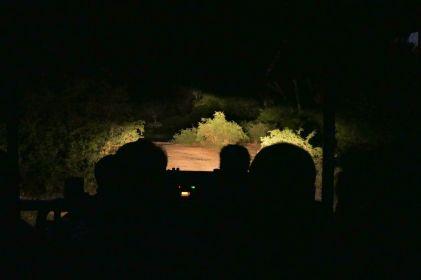 Südafrika South Africa Garden Route Ostkap Sibuya Game Reserve Wildreservat Safari Game Drive Nacht