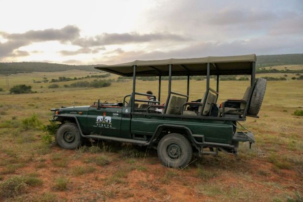 Südafrika South Africa Garden Route Ostkap Sibuya Game Reserve Wildreservat Safari Game Drive Safariwagen