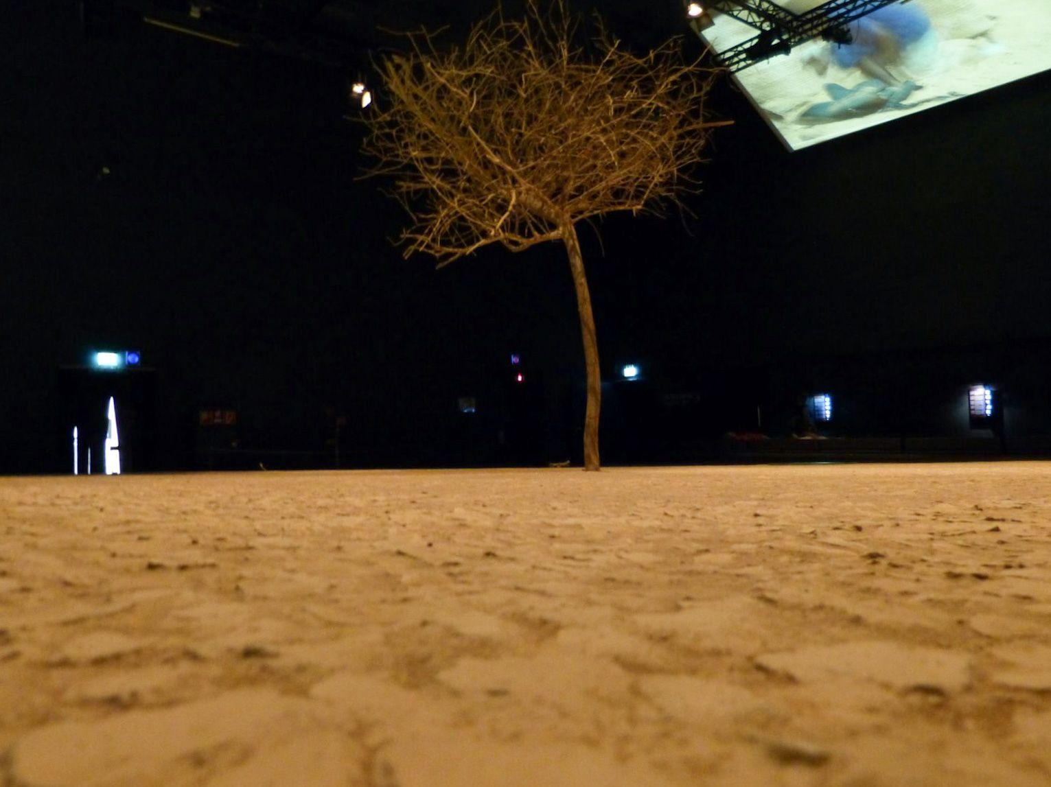Bremerhaven Deutschland Klimahaus Museum Klima Wetter Wüste Niger
