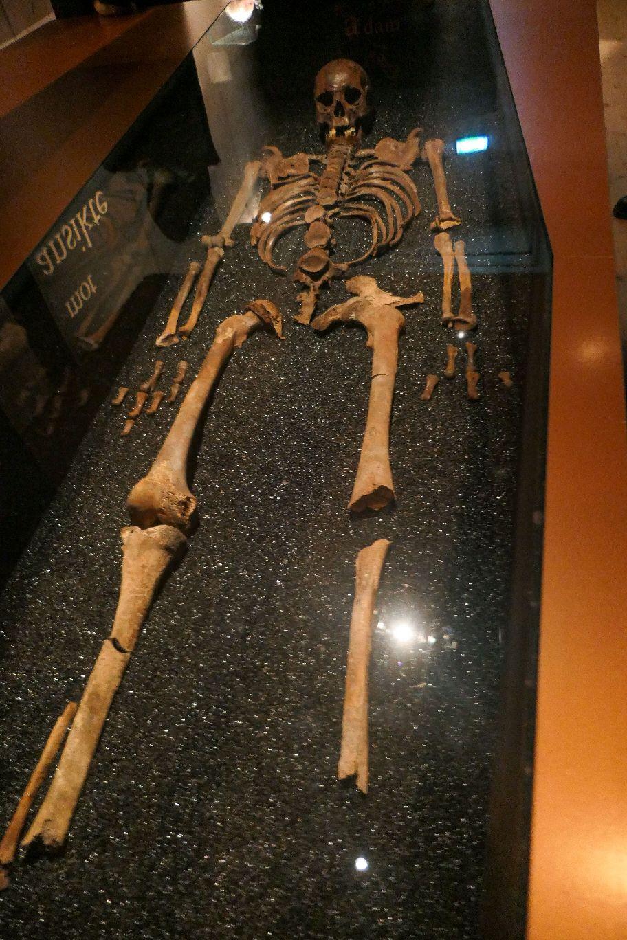 Stockholm Schweden Djurgarden Vasa Museum Schiff Kriegsschiff historisch Skelett