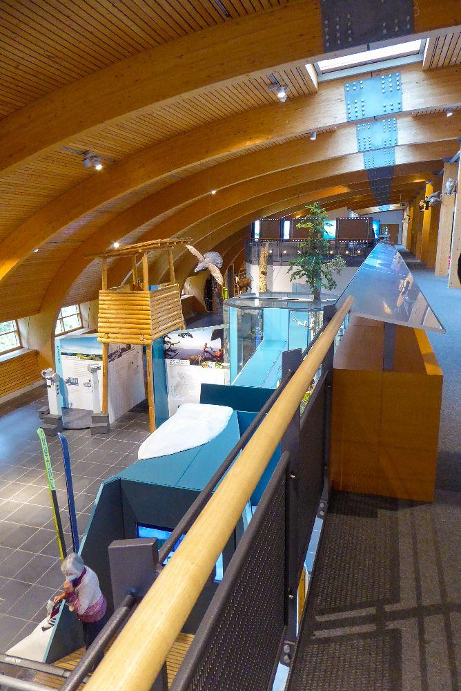 Deutschland Schwarzwald Hochschwarzwald Feldberg Haus der Natur Naturkundemuseum