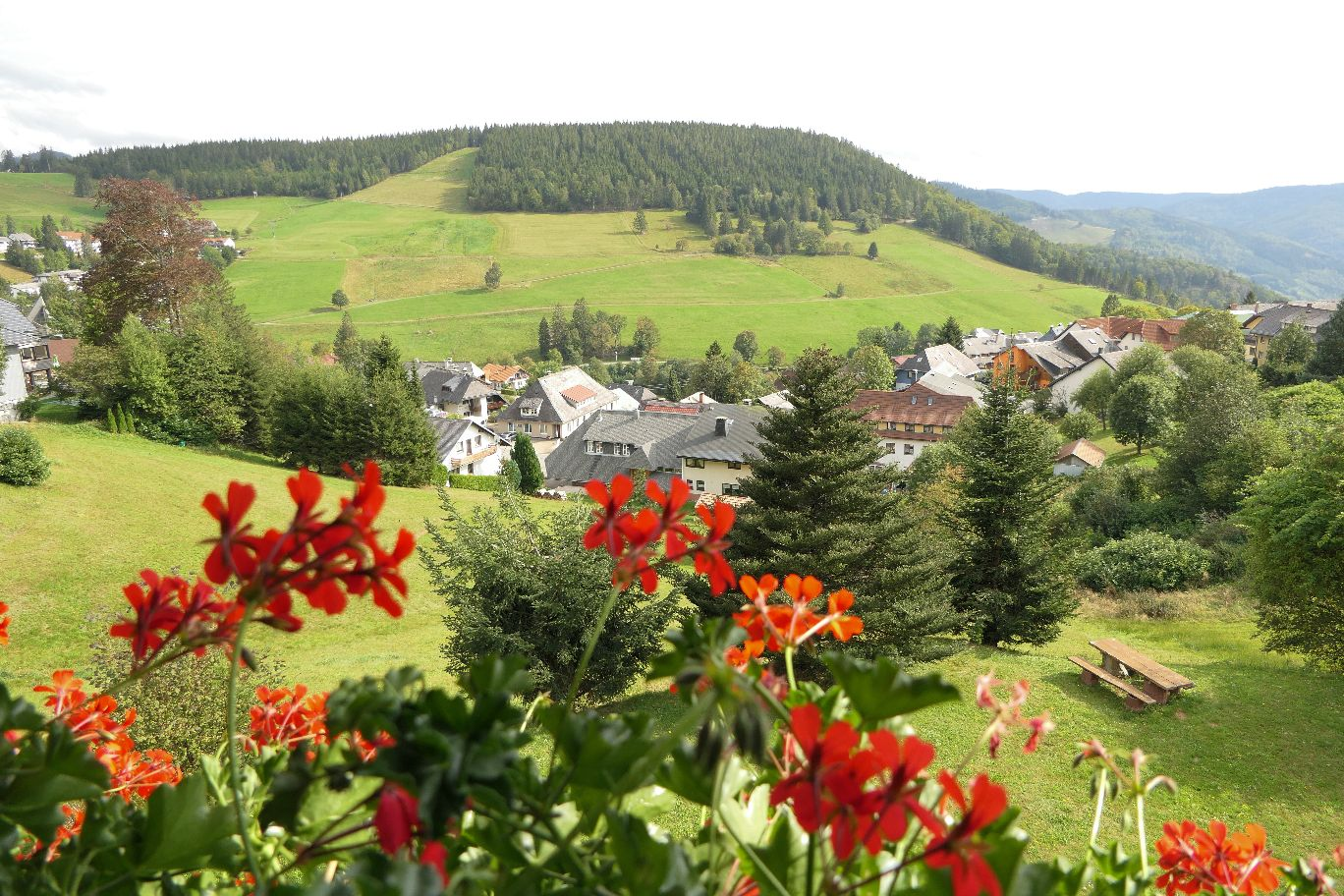 Deutschland Schwarzwald Hochschwarzwald Todtnauberg Pension Elisabeth Hotel Balkon