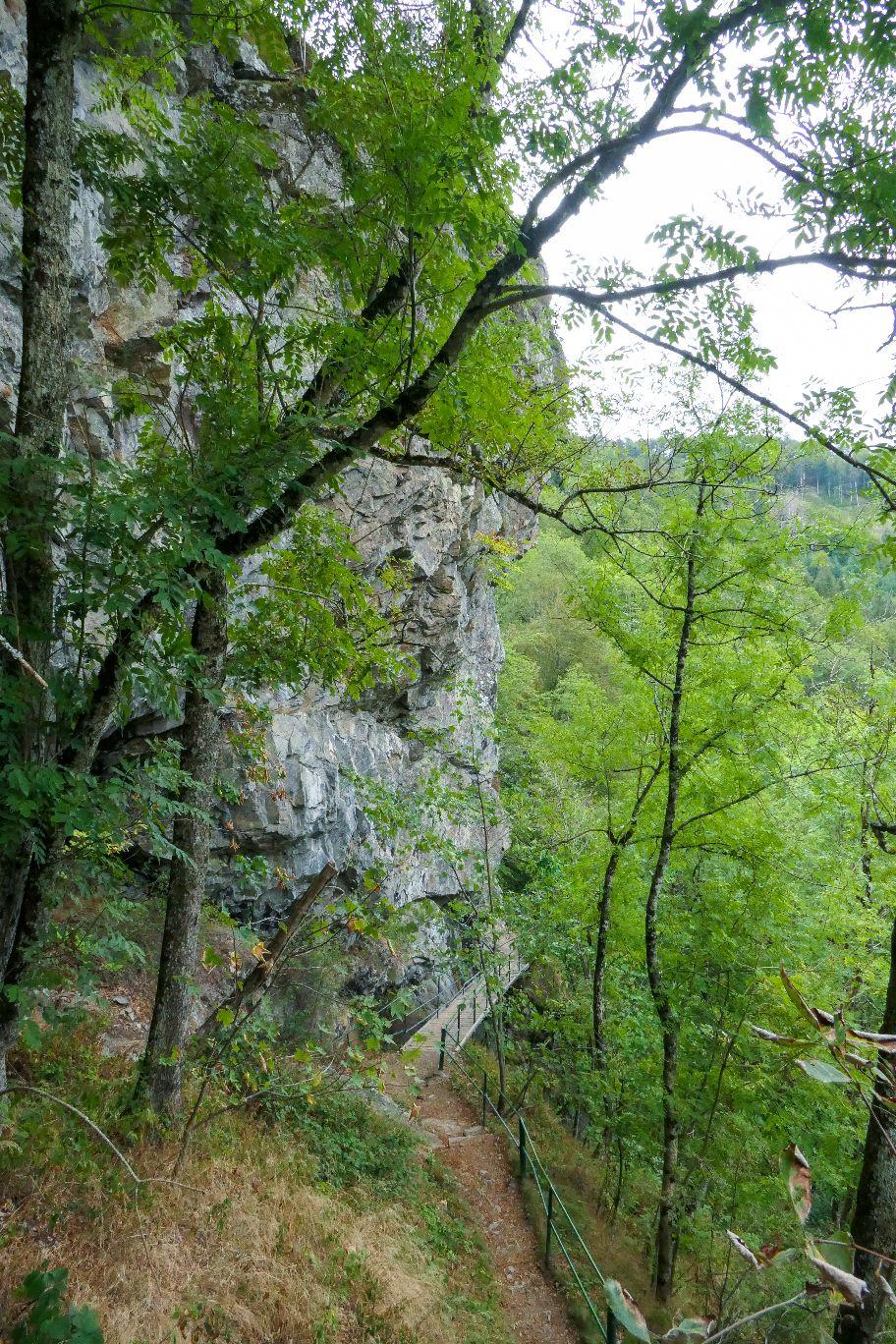 Deutschland Schwarzwald Hochschwarzwald Todtnauberg Todtnauer Wasserfall Rundweg